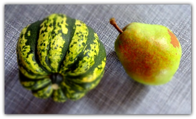 Carnival Squash and Anjou Pear