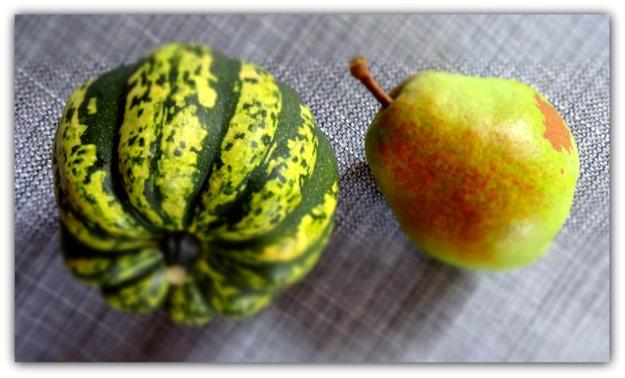 Carnival Squash and Anjou Pear