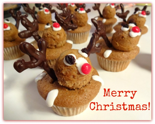 Reindeer Cupcakes made with the Cannonball Ice Ball Tray